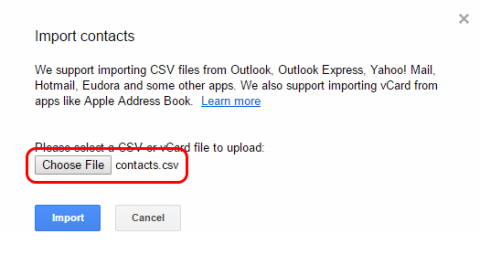A screenshot of the Import Contacts dialog box, highlighting the Choose File button and the name of the file to be imported.