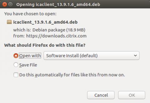 Install debian package