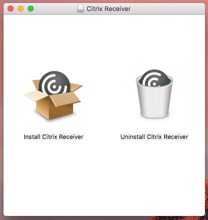 icons in ctrix installer disk image