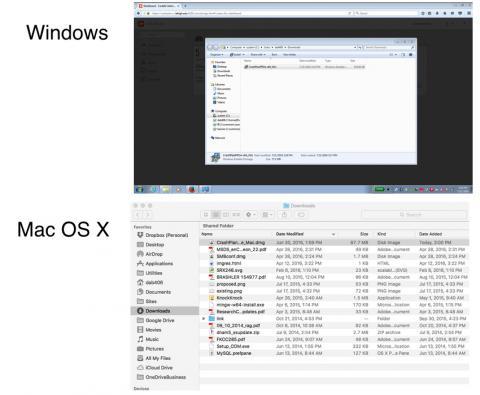 downloads folders