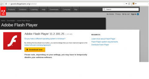 Fake Adobe Website